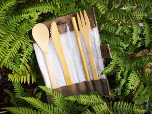 Plastic Free Travel Kit - Bamboo Cutlery set against a fern plant background