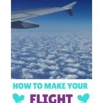 Tips to Make Your Flight More Eco-Friendly