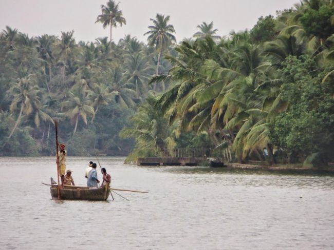 boat on the river in the rain with palm trees filling the shoreline - Kerala - The Best Place for Solo Travel in India